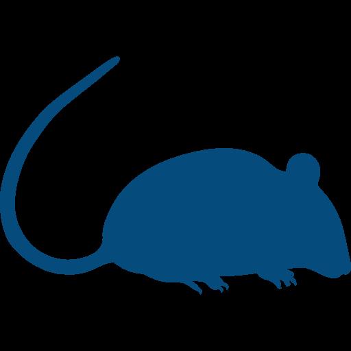 Pictogramme rat