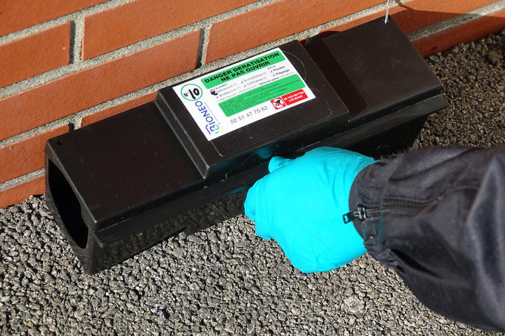Technicien Bioneo ferme la boite piège à rat avec une clé